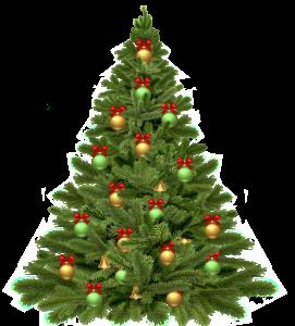 christmas-tree-1808558_1920