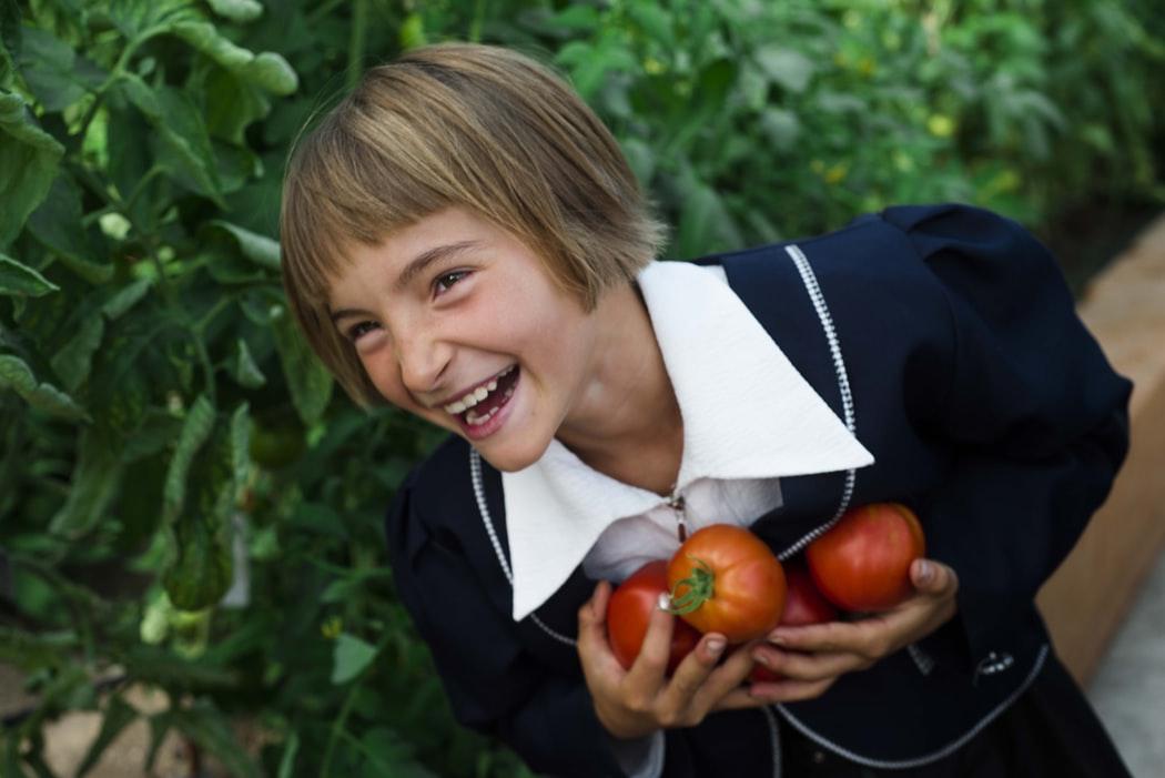catholic schools in orlando  gardening with genesis 1 29